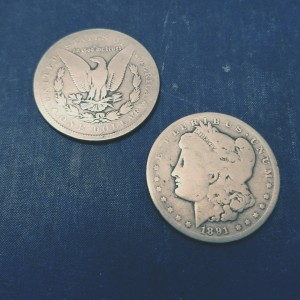 Morgan Dollar Expanded Tail Shell and Matching Coin
